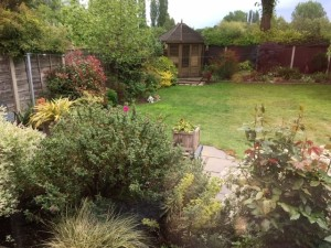 Jean's garden with roses and bushes in the foreground, a lawn, a summerhouse and the trees in the park beyond the fence.