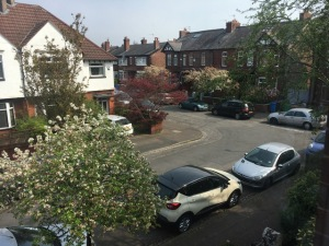 Linda's view from the bedroom includes the crab apple tree in blossom, parked cars and her neighbours's houses.  There's a sharp bend in the road.